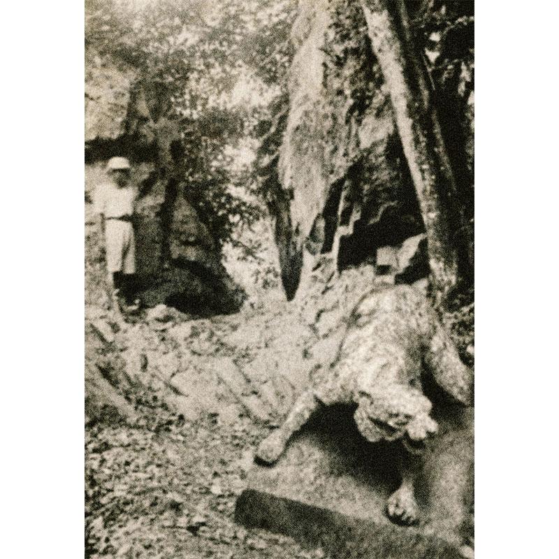 A picture entitled Arca di Hutan Rumpun Kelok