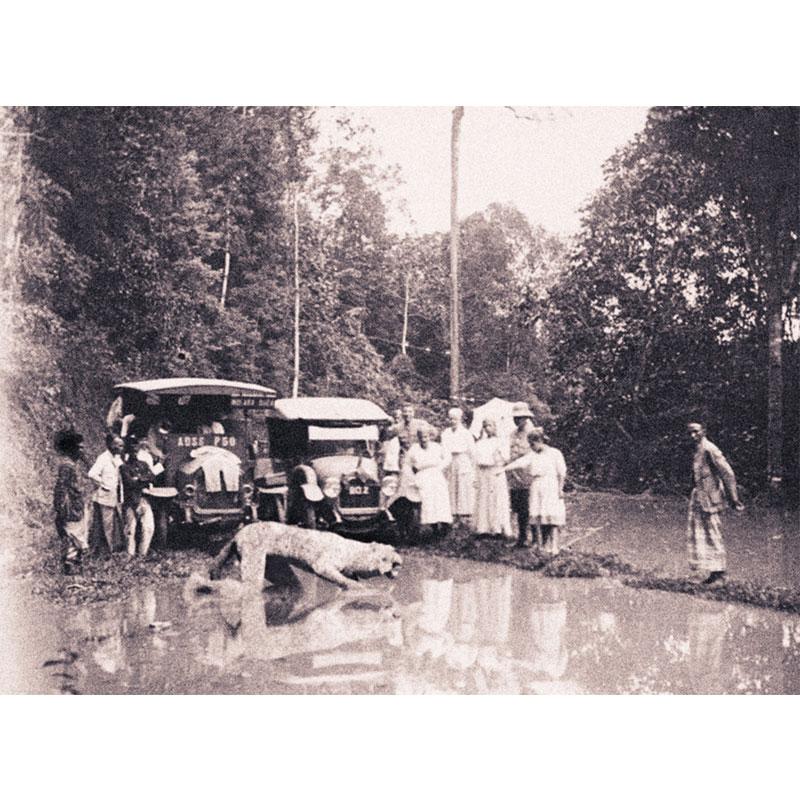 A picture entitled Arca di Rawapengkok